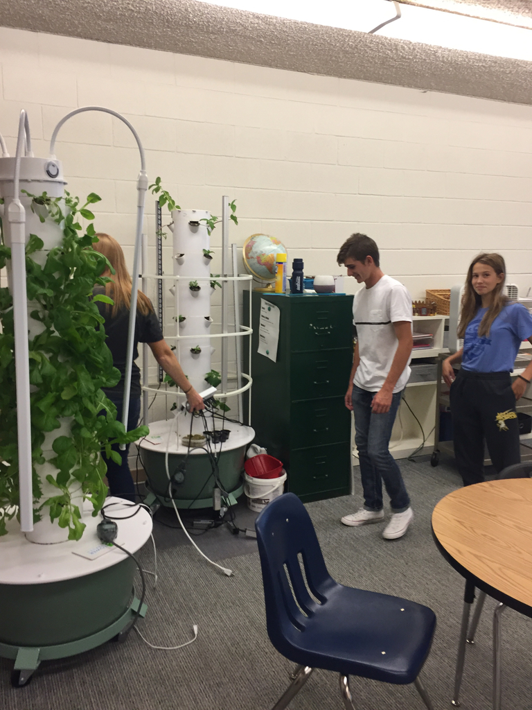 "The ""thieves"". Are caught red-handed returning the tower garden they stole from Mrs. Moore!!"